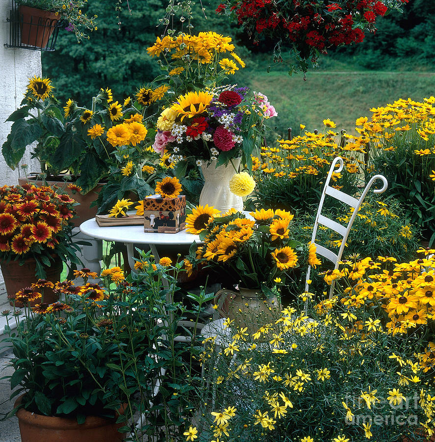 Plant Photograph - Garden With Table And Chair by Hans Reinhard
