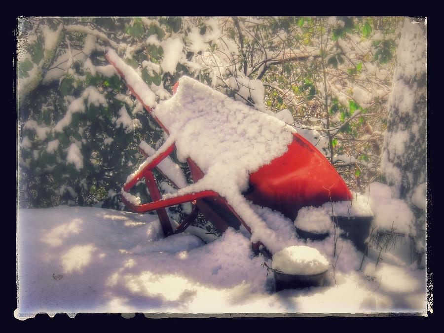 Garden Photograph - Gardeners winter dream by Nicole Angell