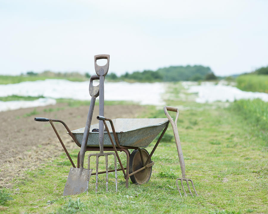 Gardening Tools And Wheel Barrow On Photograph by Dougal Waters