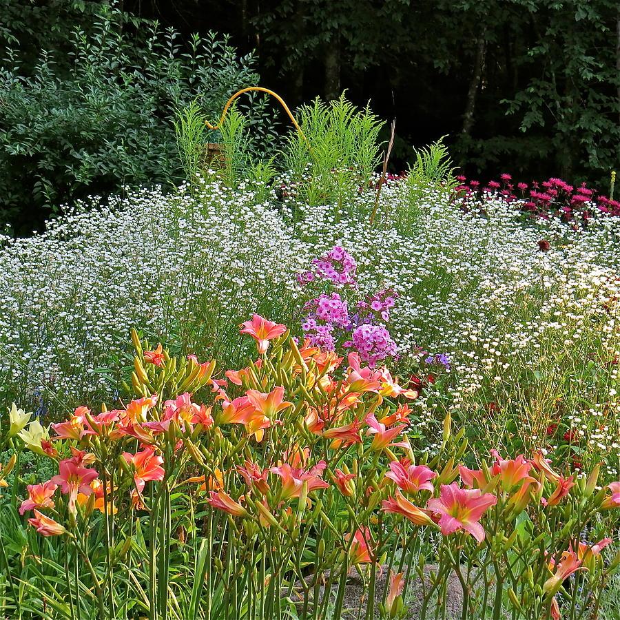 Gardens Photograph - Gardens 101 by Patsy Pratt