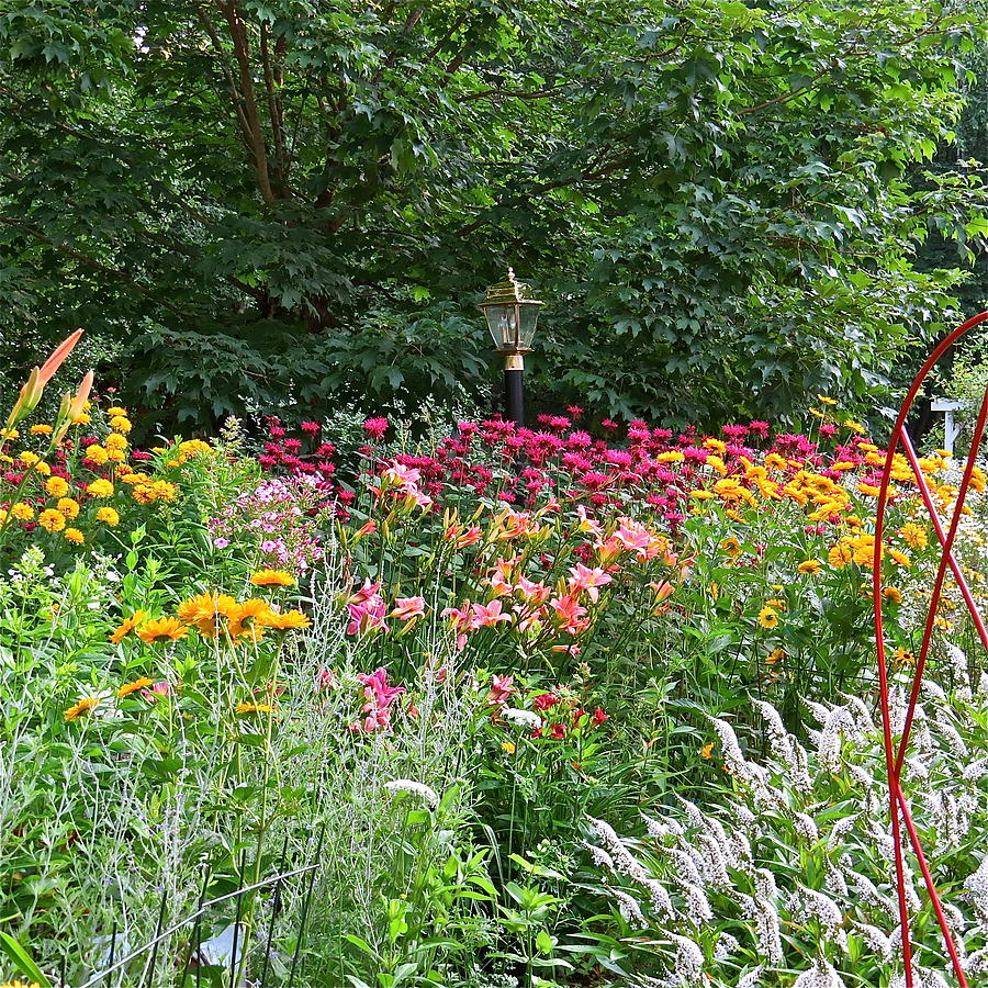 Gardens Photograph - Gardens 109 by Patsy Pratt