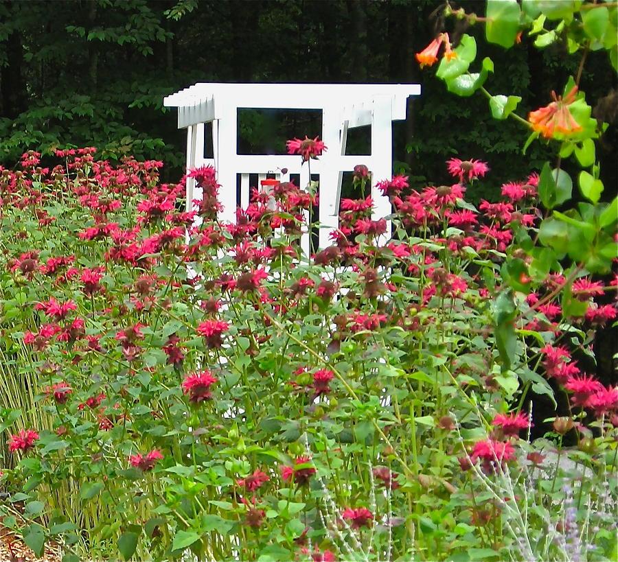 Arbor Photograph - Gardens 114 by Patsy Pratt