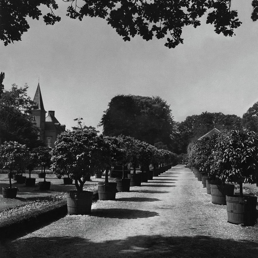 Gardens Of Twickel Castle Photograph by Constantin Joffe