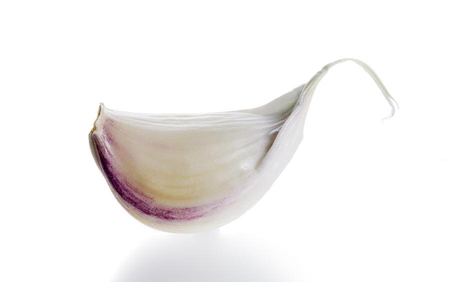 Garlic clove (Allium sativum) Photograph by Richard Clark