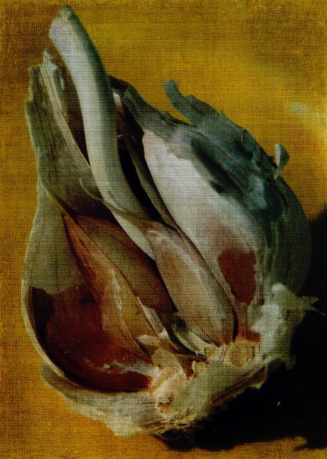 Garlic Digital Art - Garlic is for Heroes by Sarah Vernon