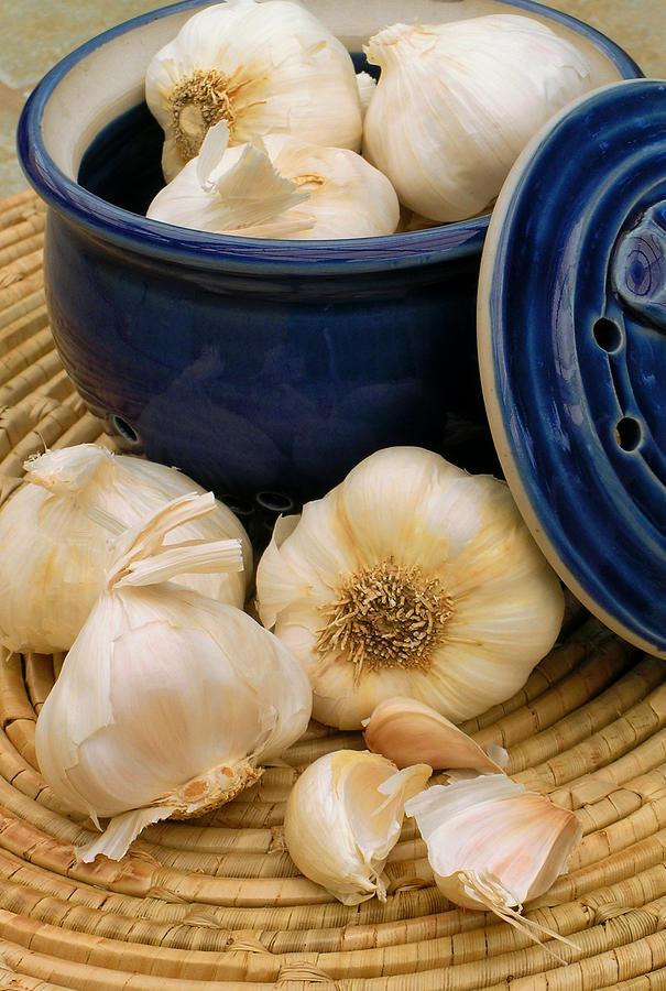 Garlic Photograph - Garlic by James Temple