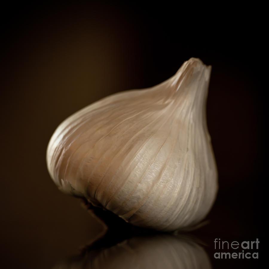 Garlic Photograph - Garlic Square by Patricia Bainter