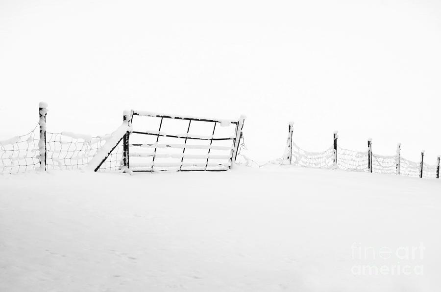 Anne Photograph - Gate In Snow by Anne Gilbert