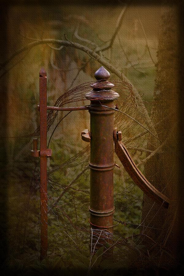 Vintage Photograph - Gate Post by Liz  Alderdice