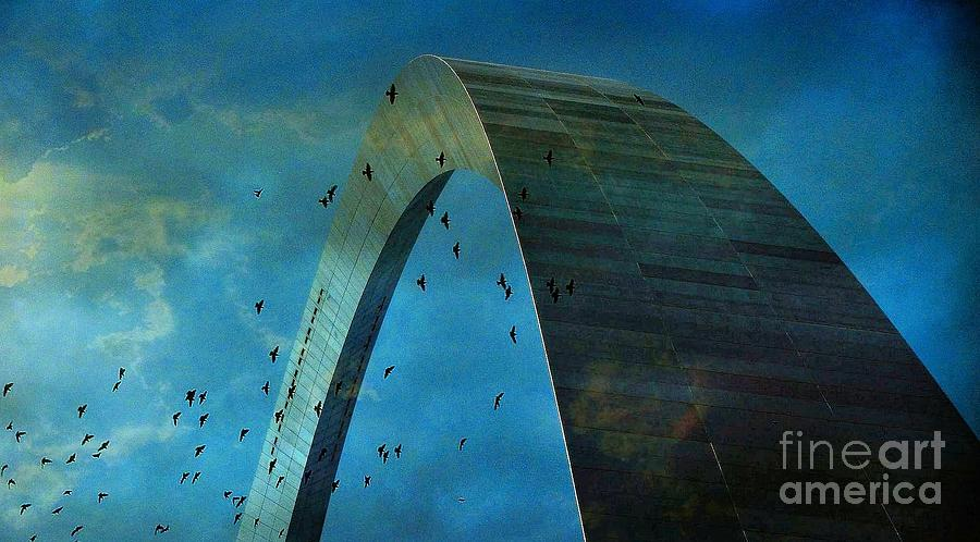 Gateway Arch Photograph - Gateway Arch With Birds by Janette Boyd