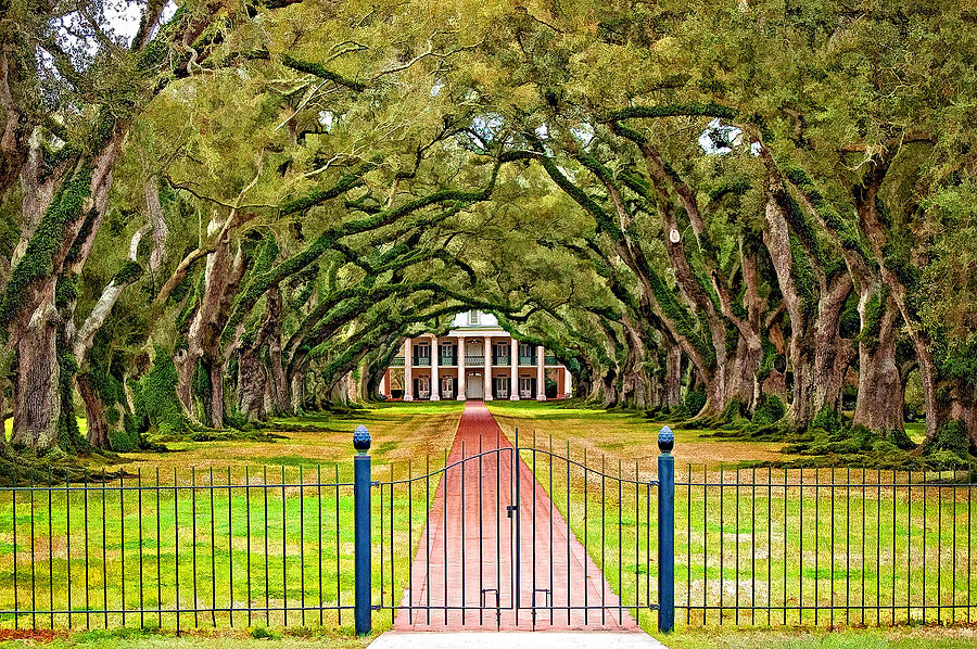 Oak Alley Plantation Photograph - Gateway To The Old South Paint by Steve Harrington