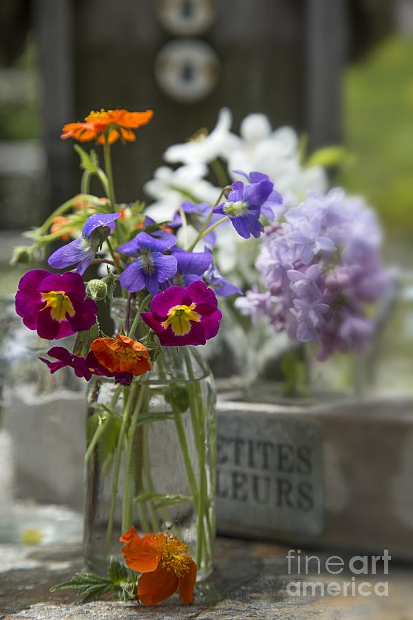 Colorful Photograph - Gathering Wildflowers by Edward Fielding