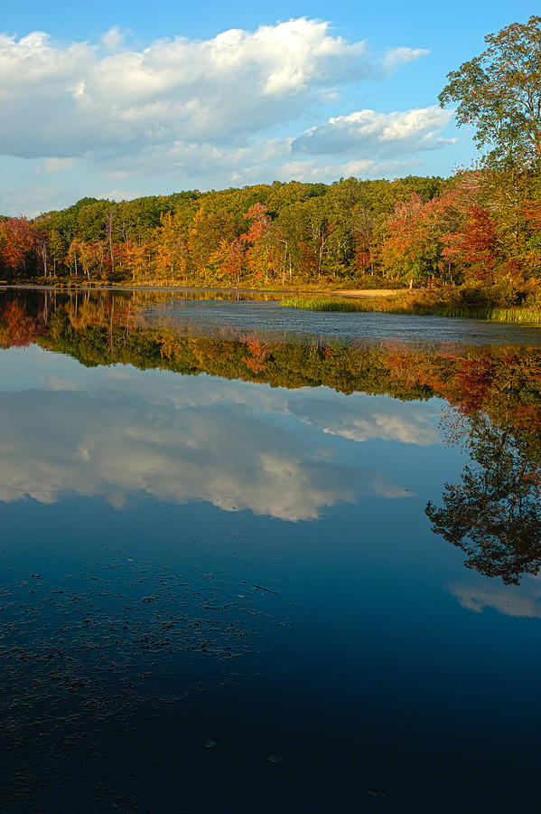 Autumn Photograph - Gay City Pond by Clifford Pugliese