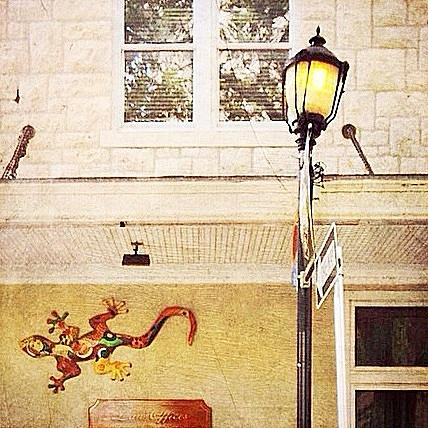 Gecko Photograph - Gecko And Lamp by Beth Williams