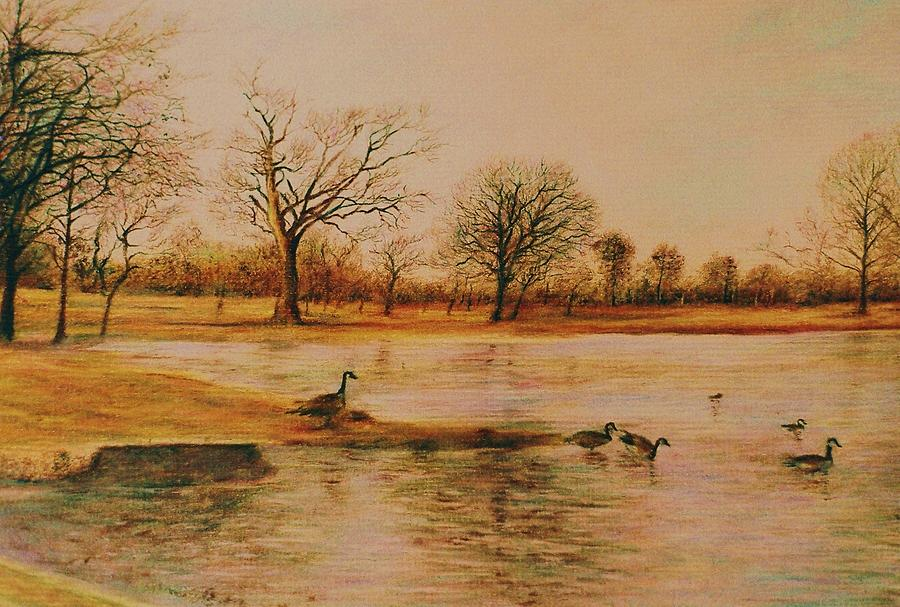 Landscape Drawing - Geese Crossing by Terry Jackson