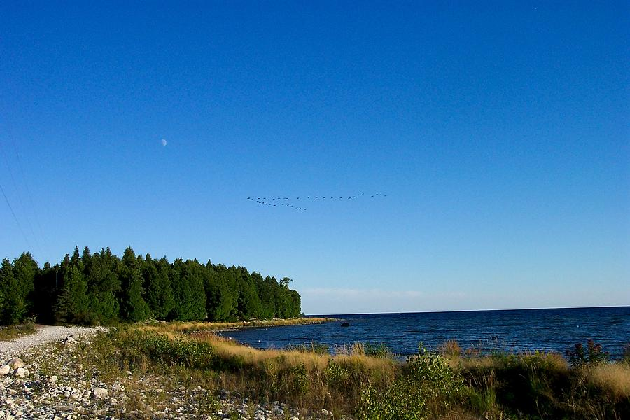 Cana Island Photograph - Geese Over Cana Island by Pamela Schreckengost