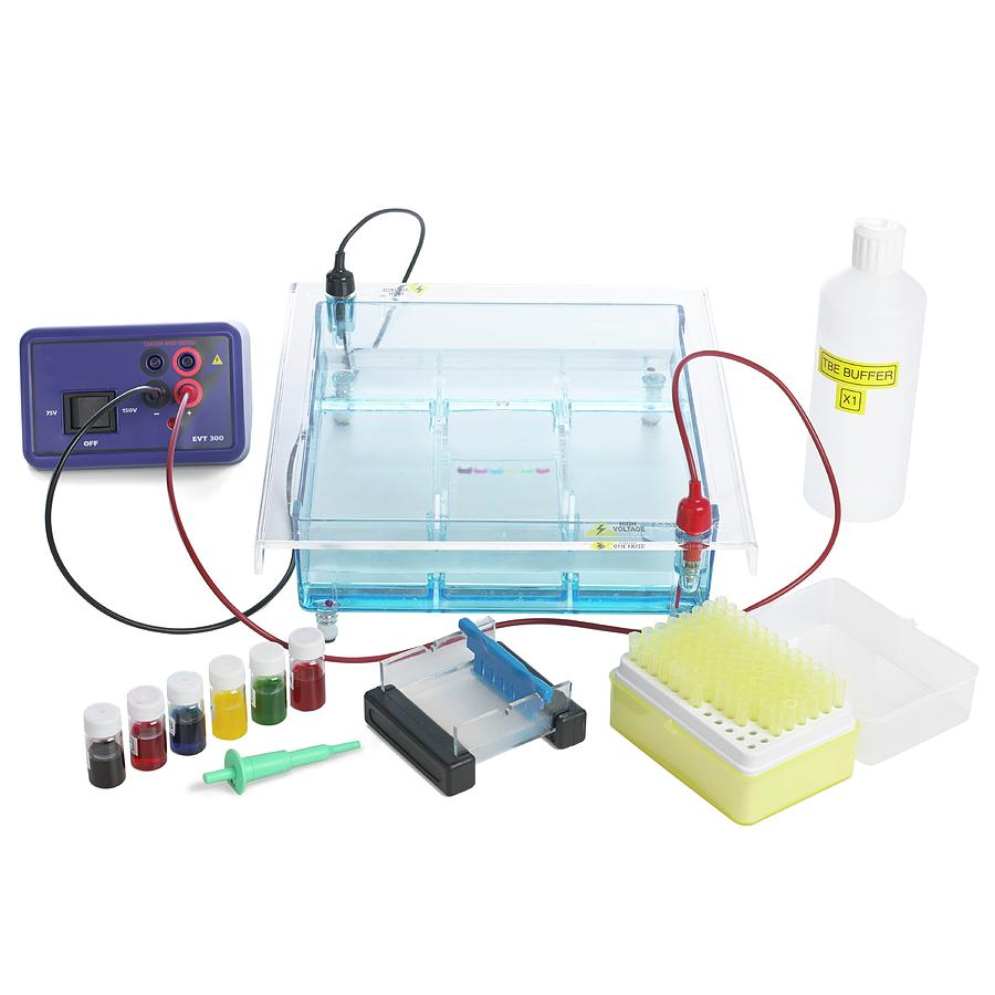 gel electrophoresis equipment photograph by science photo
