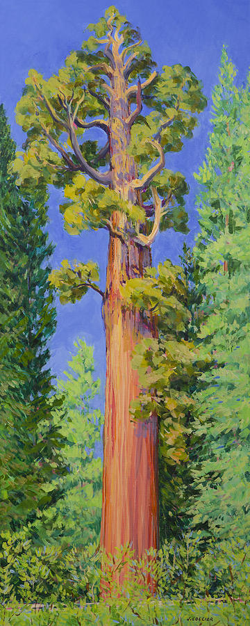 Acrylic Painting Painting - General Grant Tree by Joy Collier
