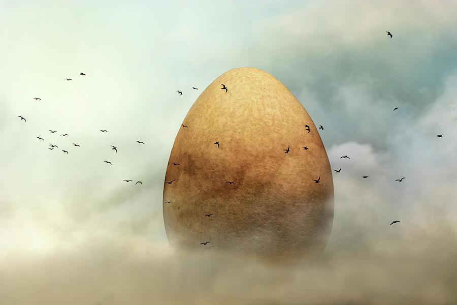 Egg Photograph - Genesis by Piet Flour