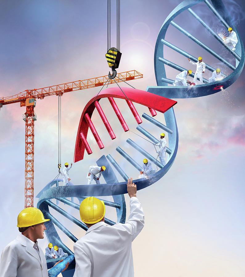 Dna Photograph - Genetic Engineering by Smetek/science Photo Library