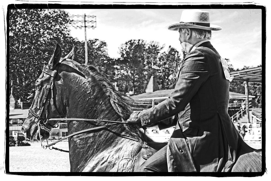 Horse Photograph - Gentleman Rider by Alice Gipson