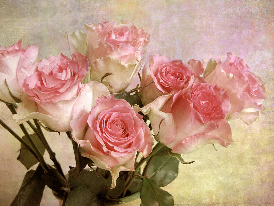 Flowers Photograph - Gently by Jessica Jenney