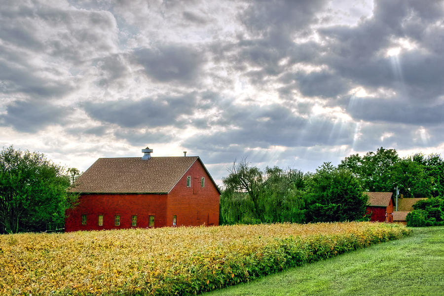 Red Barns Photograph - Geometry Of Autumn by Nikolyn McDonald