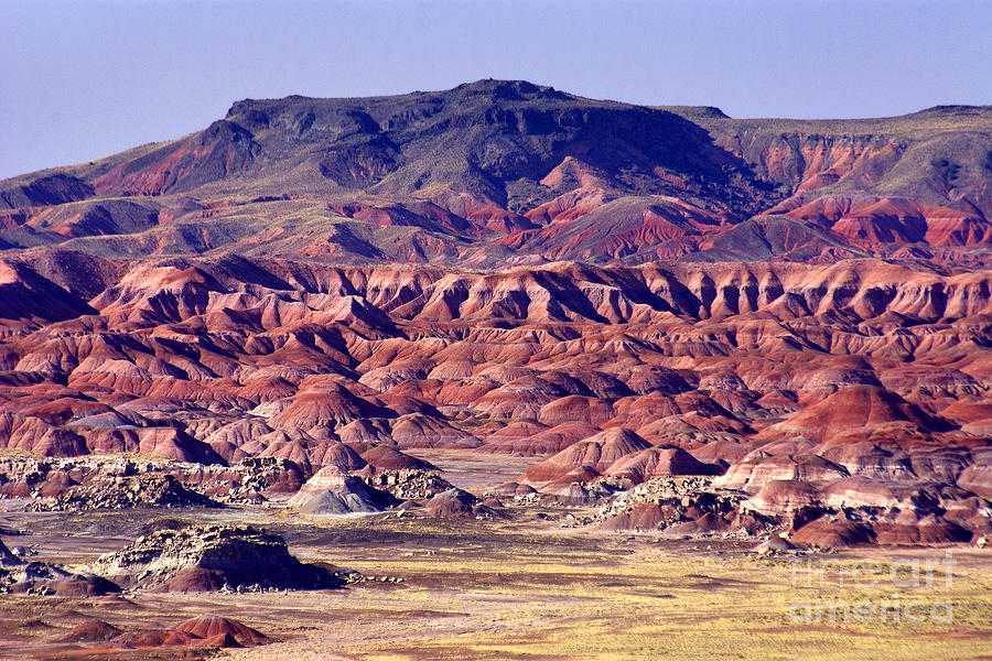 The Painted Desert Photograph - Georgia Okeefe Country - The Painted Desert by Douglas Taylor