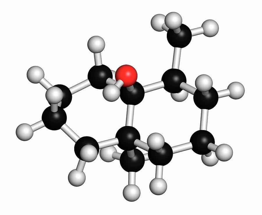 Earthy Photograph - Geosmin Earthy Flavour Molecule by Molekuul/science Photo Library