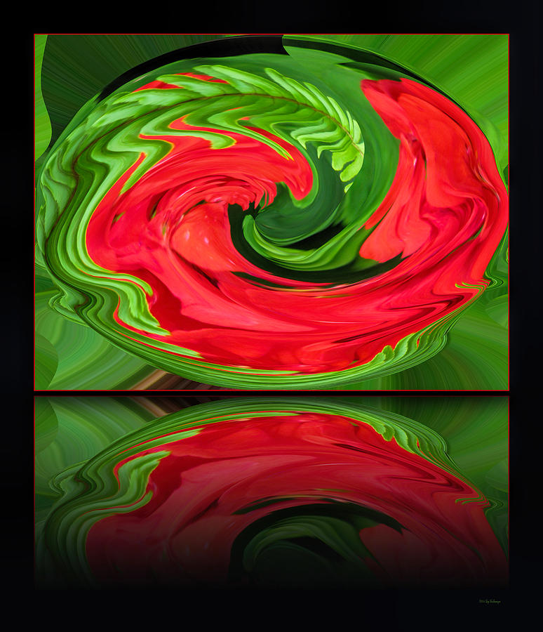 Red Orb Photograph - Geranium and Fern Reflection by Lucy VanSwearingen