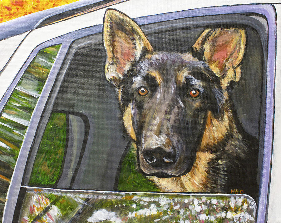 German Shepherd  by Meghan OHare