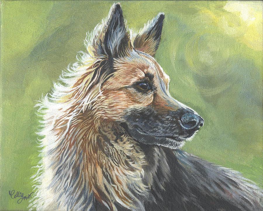 German Shepherd Portrait by Callie Smith