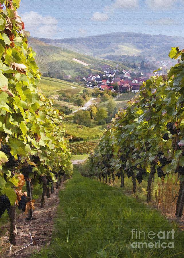 Vineyard Digital Art - German Vineyard by Sharon Foster