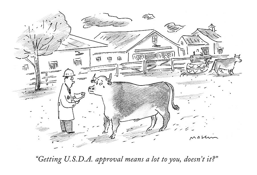 Getting U.s.d.a. Approval Means A Lot Drawing by Michael Maslin