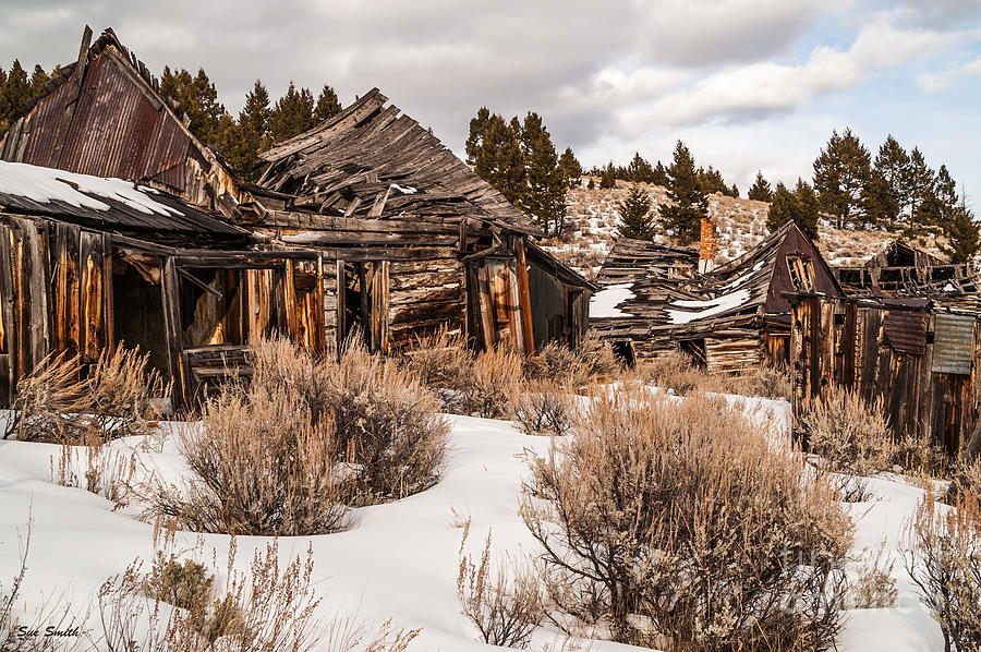 Ghost Town Photograph - Ghost Town by Sue Smith