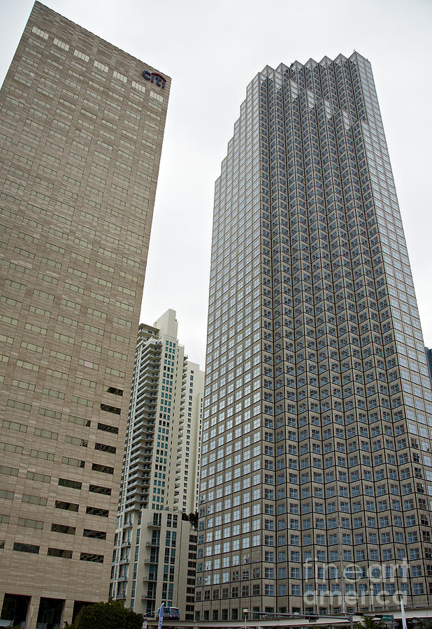 Buildings Photograph - Giant Beauty by Eyzen M Kim