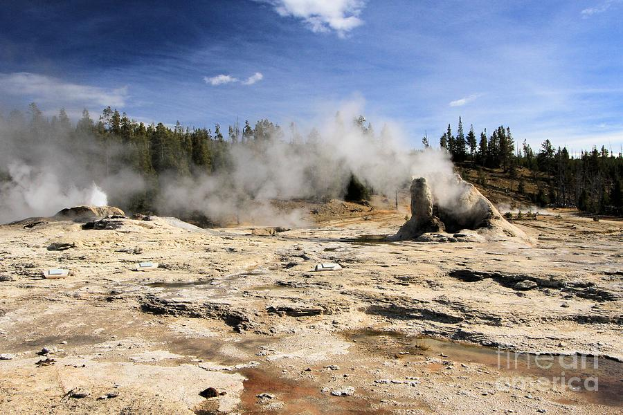 Giant Geyser Photograph - Giant Geyser Group by Adam Jewell