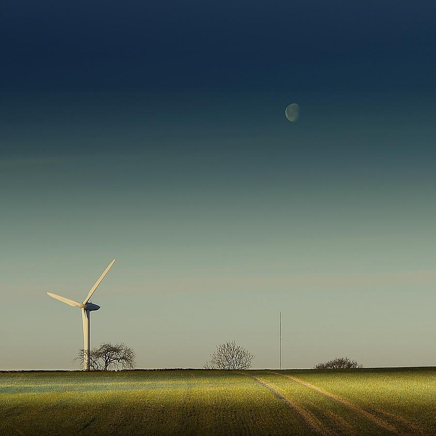 Giants...harvest The Wind Photograph by A Goncalves