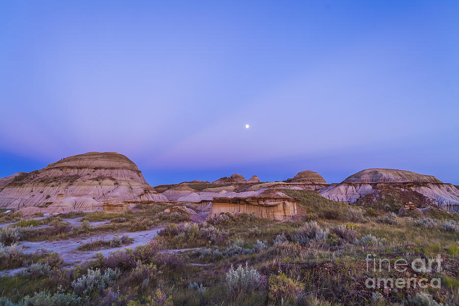 Alberta Photograph - Gibbous Moon And Crepuscular Rays by Alan Dyer