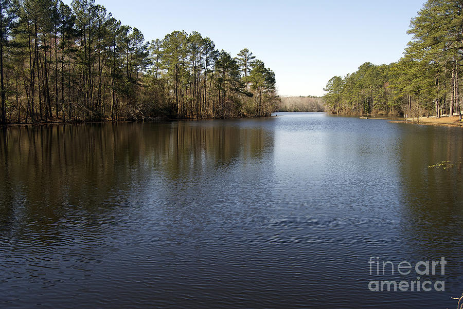 Scenic America Photograph - Gibson Pond by Skip Willits