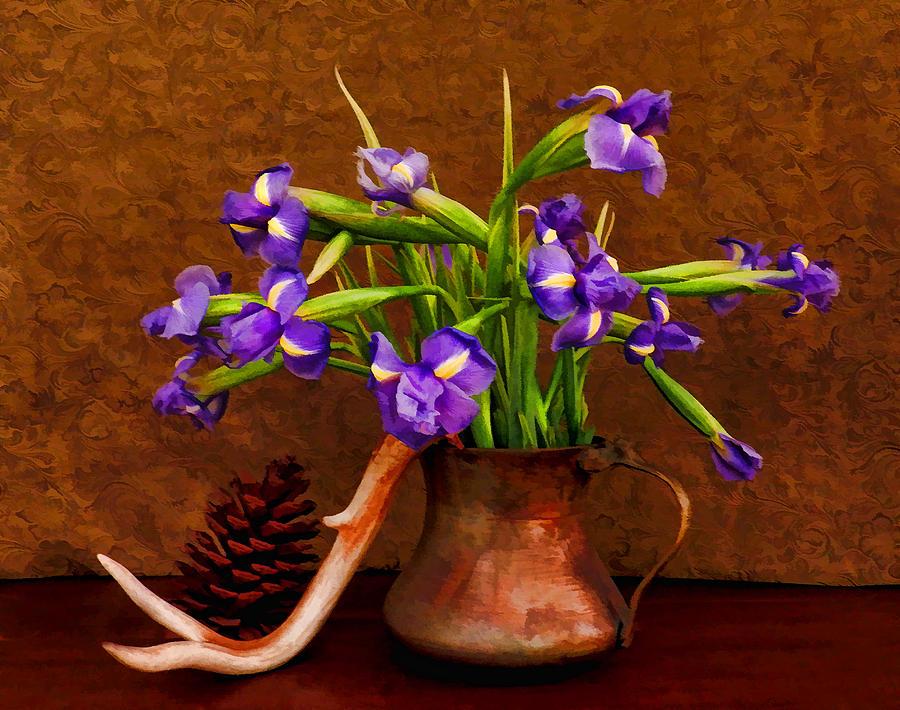 Irises Digital Art - Gifts by Grace Dillon