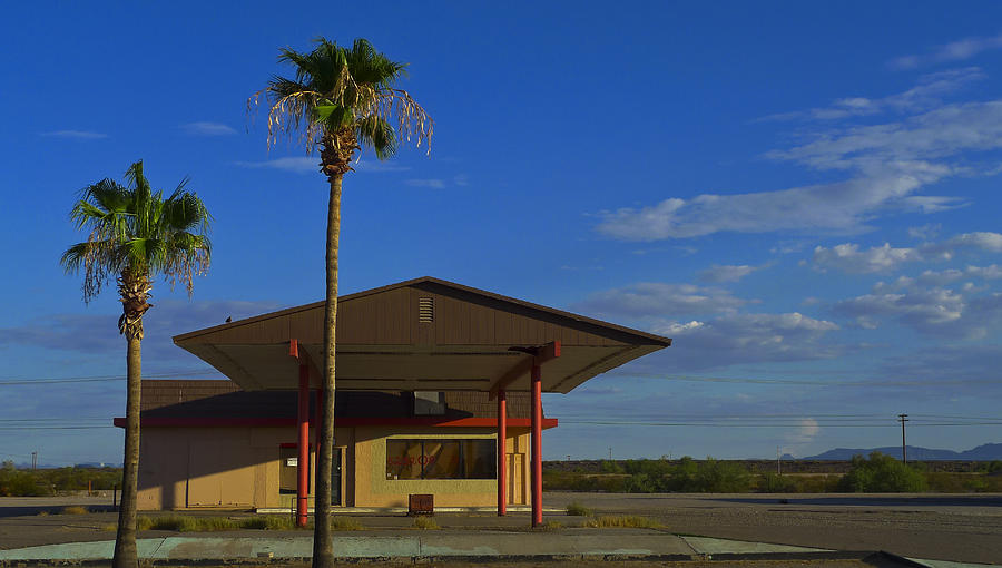 Palms Photograph - Gila 520208 by Skip Hunt