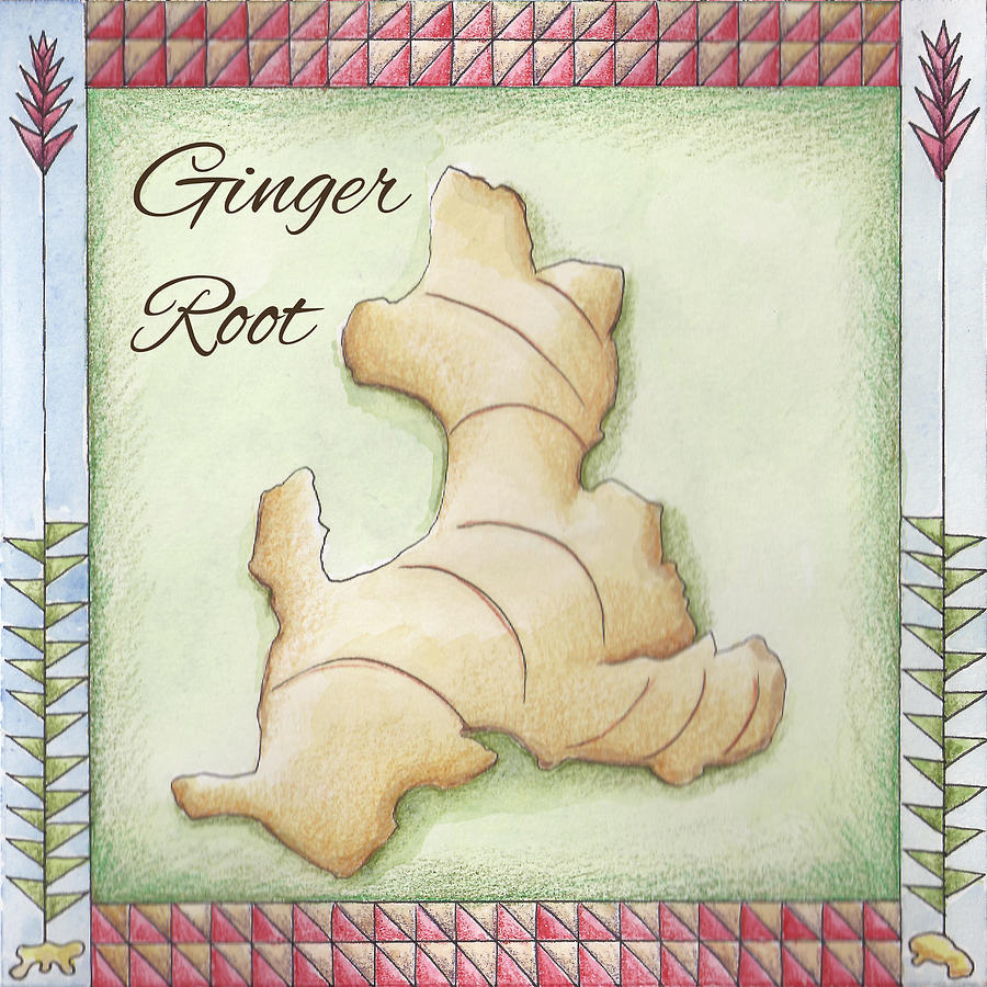Ginger Root Painting - Ginger Root by Christy Beckwith