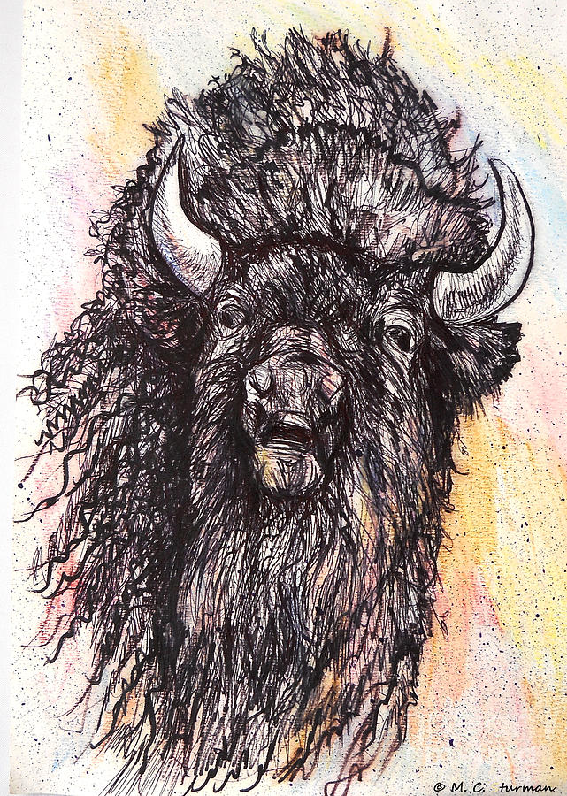 Buffalo Painting - Give Me A Home Where The Buffalo Roam by M c Sturman