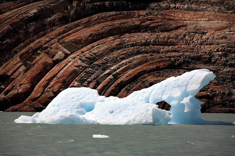 Ice Floe Photograph - Glacial Groove Marks by Steve Allen/science Photo Library