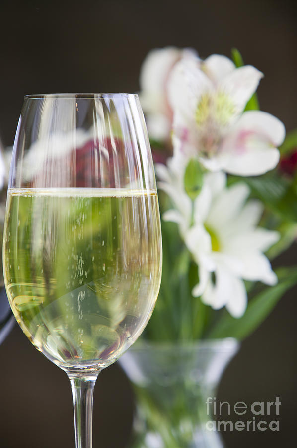 Glass of white wine with flowers photograph by don landwehrle alcohol photograph glass of white wine with flowers by don landwehrle mightylinksfo