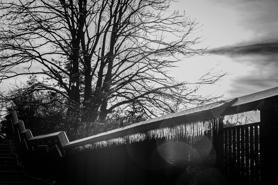 Snoqualmie Photograph - Glass by Ryan McGinnis