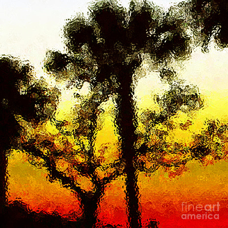 Trees Photograph - Glass Sunset by Gayle Price Thomas