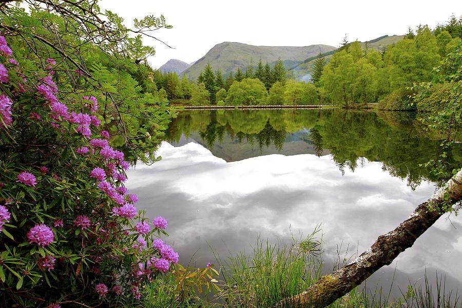 Scotland Photograph - Glencoe Lochan @Scotland by Donald Chen