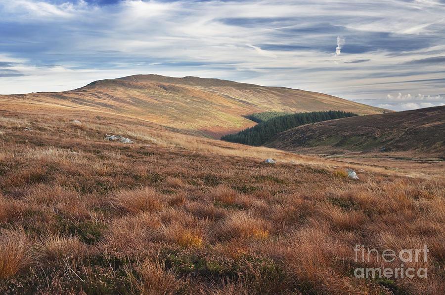 Wicklow Photograph - Glenmacnass 4 by Michael David Murphy